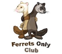 Ferrets Club